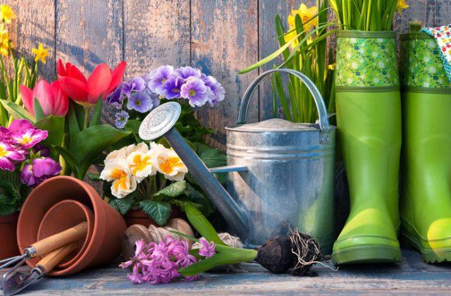 Calendrier du jardinage