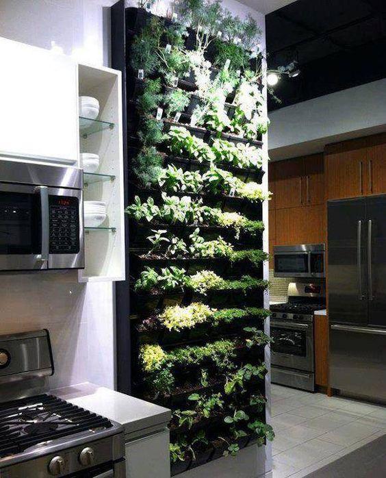 déco tendances cuisine mur végétal écolo