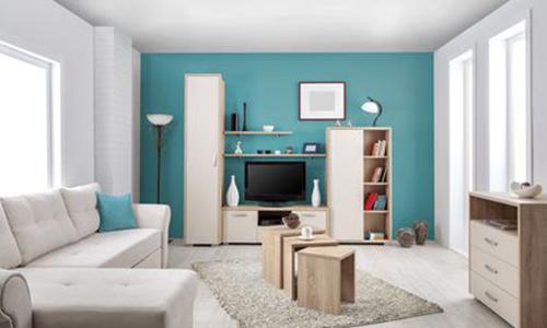 pan de mur coloré bleu canard