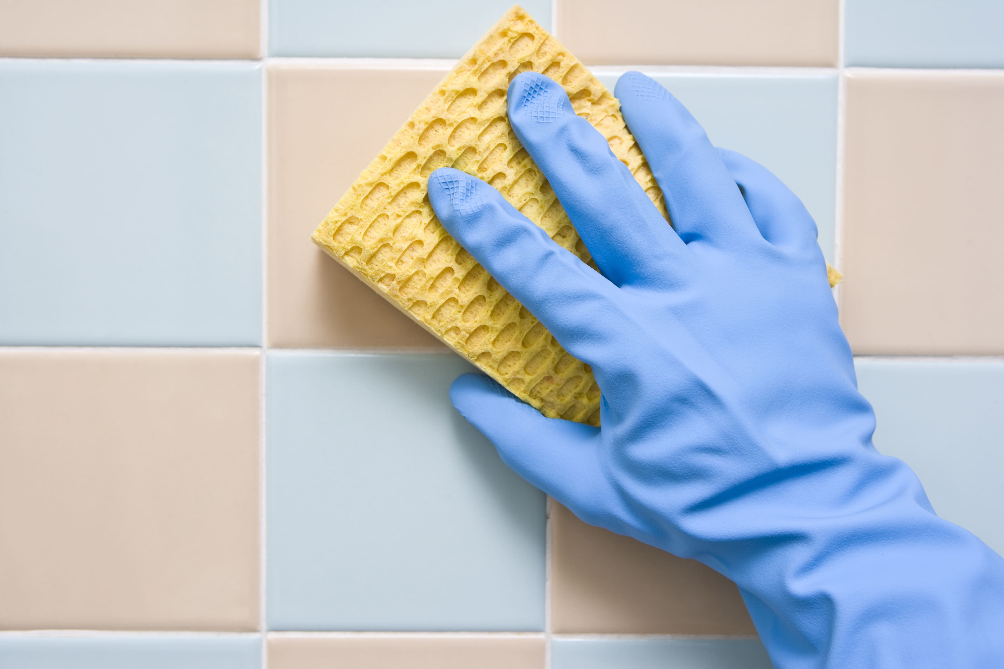 nettoyer joints salle de bain avec une éponge