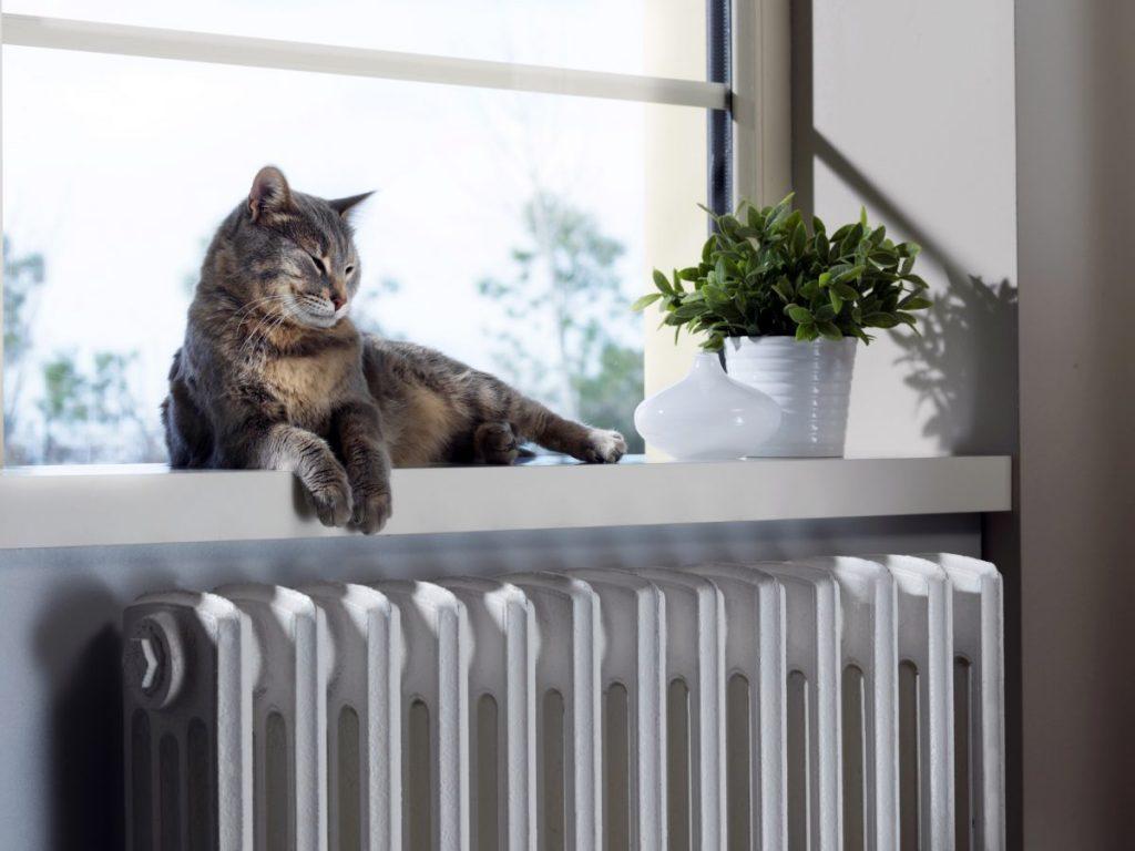 chaut sur radiateur
