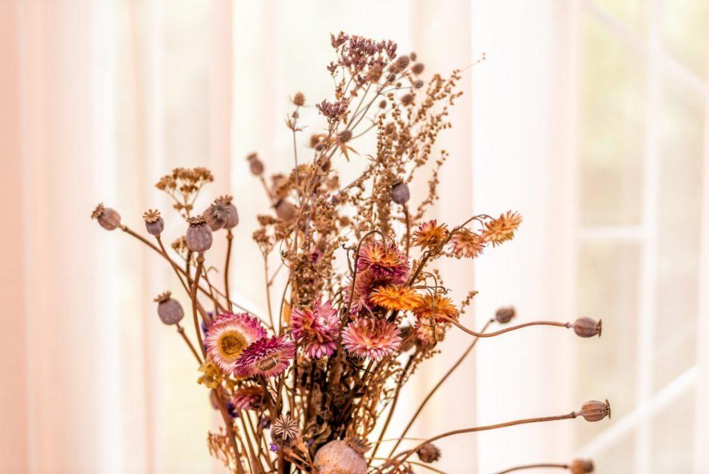 fleurs-sechees-deco-boheme
