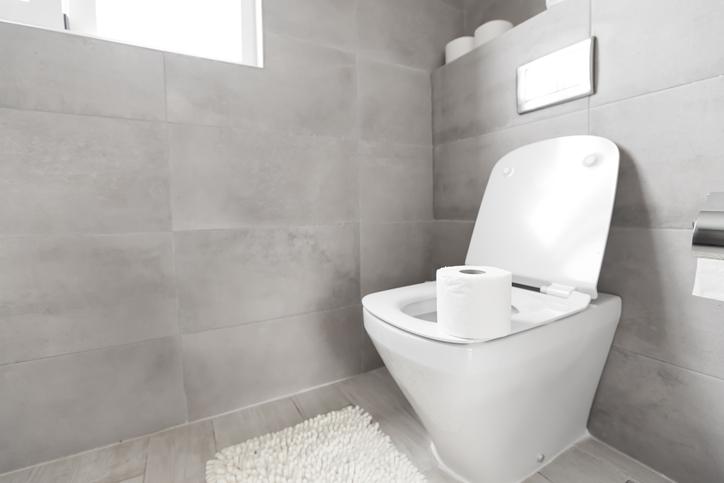 sanibroyeur wc