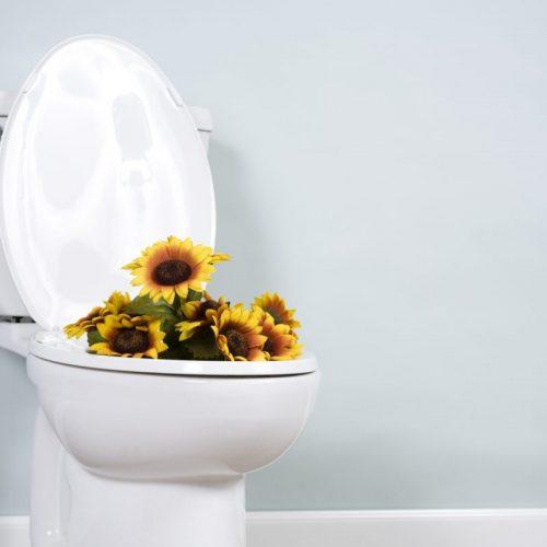comment déboucher les wc