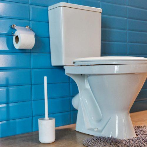 revetement-mur-toilettes