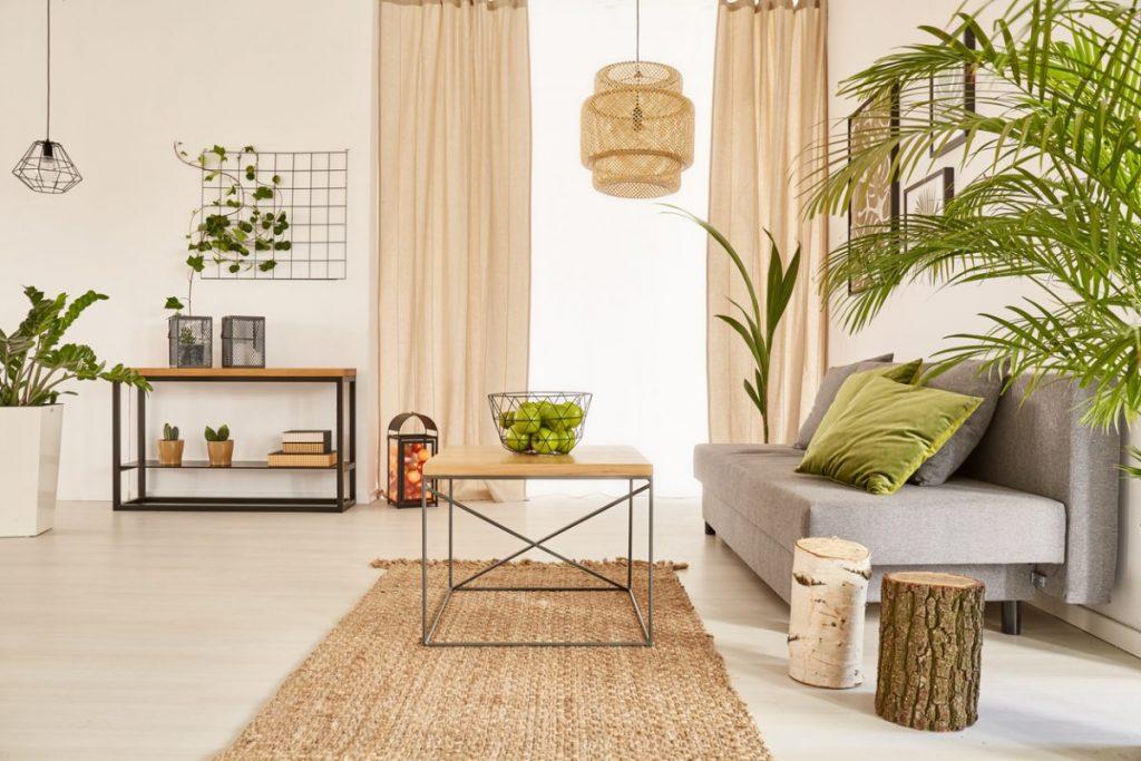 plantes-vertes-dans-salon-cocooning
