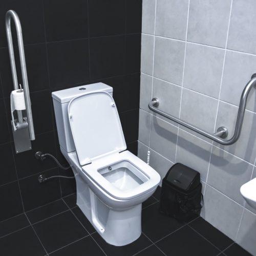 amenagement-toilette-handicap