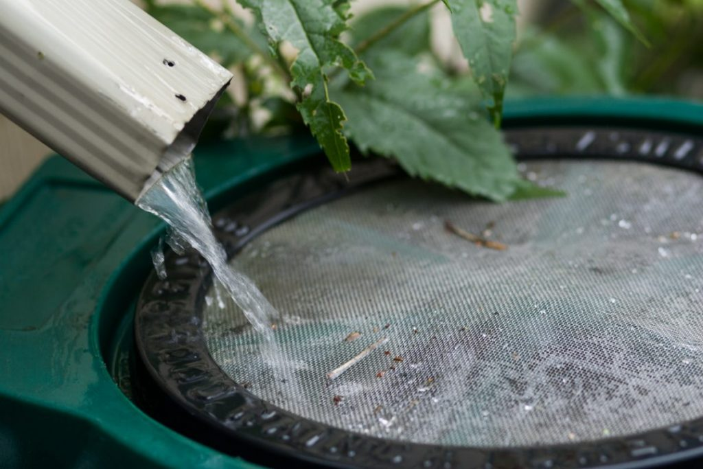 recuperer-eau-de-pluie-pour-reduire-la-consommation-d-eau-moyenne-par-personne