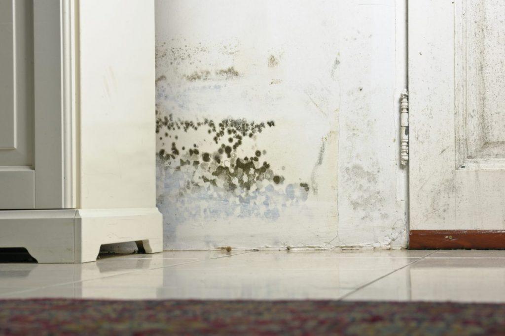 mur-humidité-taches-maison