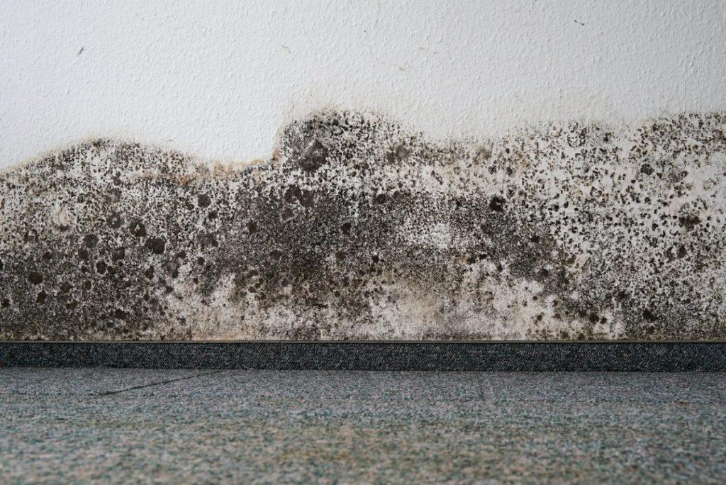 humidite-mur-exterieur