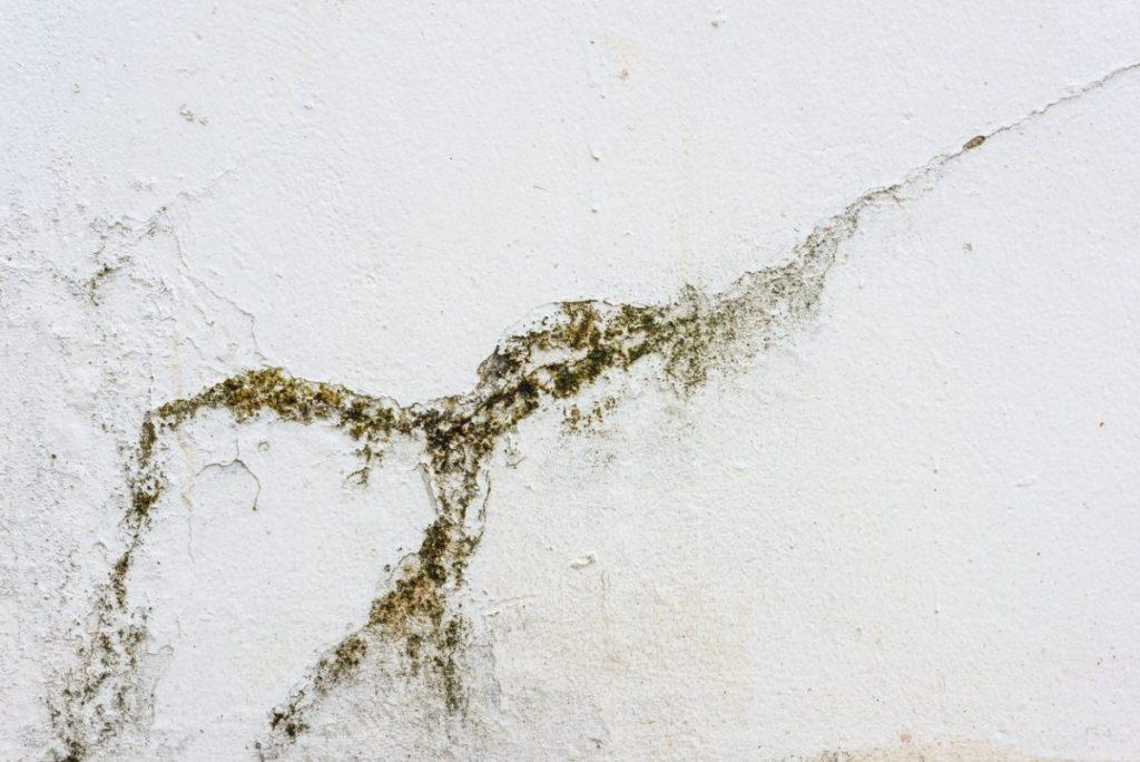 humidite-mur-fissure