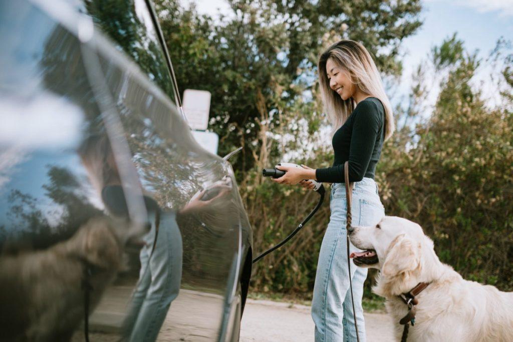 vehicule electrique choix assurance auto