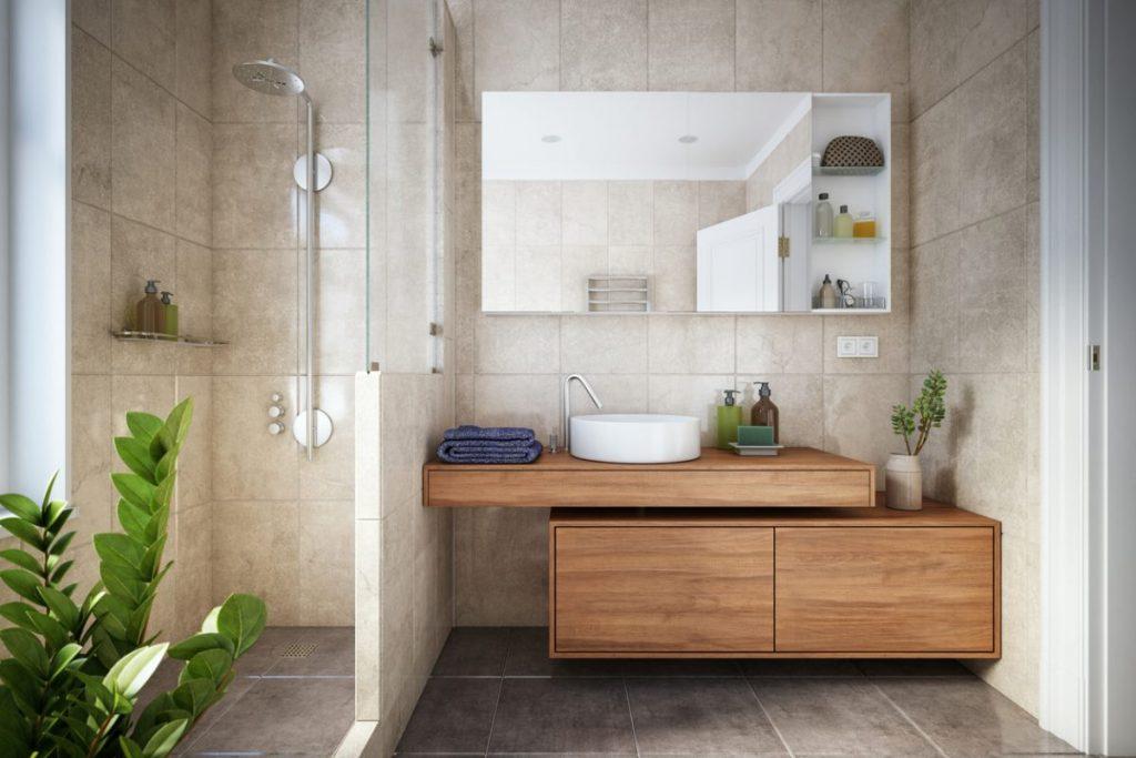 douche installee a la place de baignoire